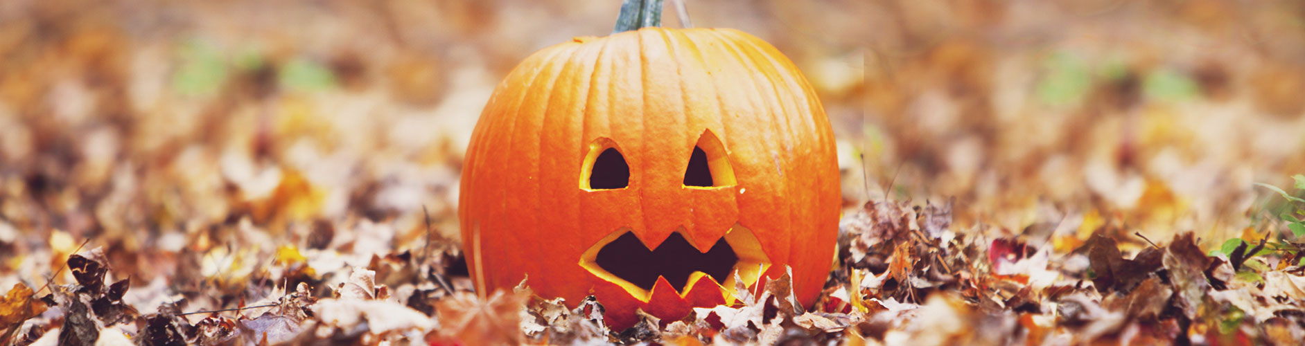 happy-halloween-humor
